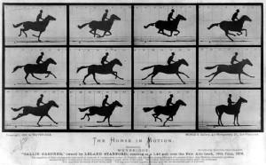 Muybridge-The_Horse_in_Motion